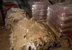 Pallets of hides from processors.